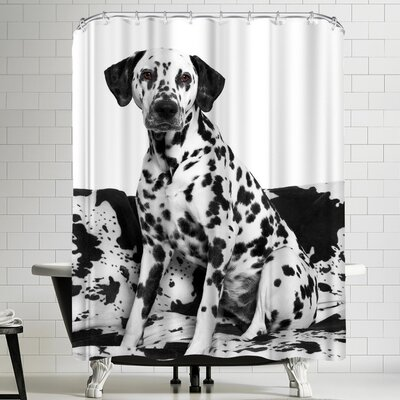 Maja Hrnjak Dalmatian Dog 2 Shower Curtain