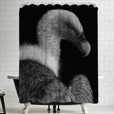 1x Majestic Shower Curtain