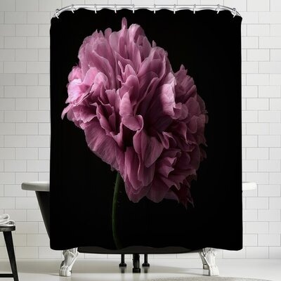1x Poppy Shower Curtain