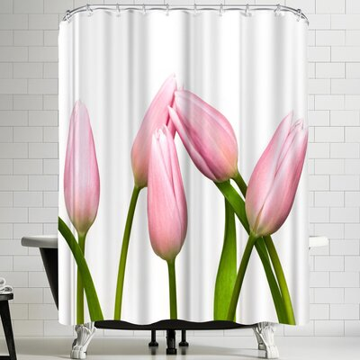Maja Hrnjak Tulips Shower Curtain