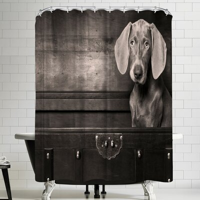 Maja Hrnjak Weimaraner Shower Curtain
