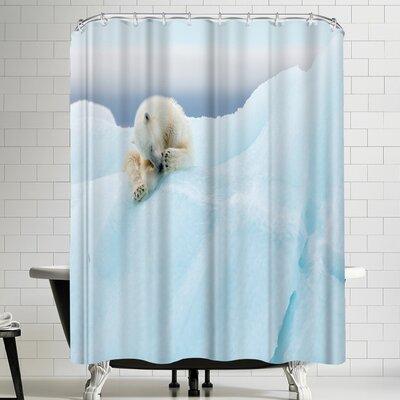 1x Polar Bear Grooming Shower Curtain