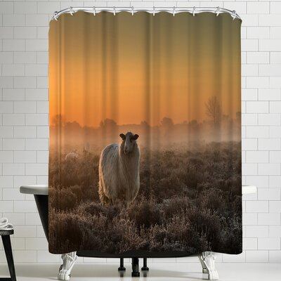 1x Sheep in the Mist Shower Curtain