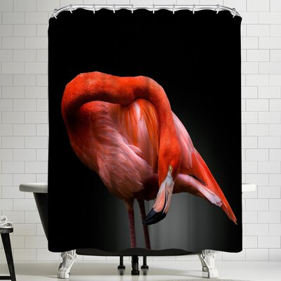 1x Bow Shower Curtain