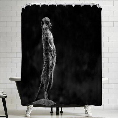 1x The Meerkat Shower Curtain