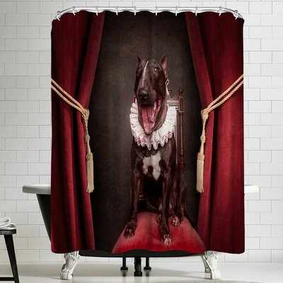 1x Welcome to the Show Shower Curtain