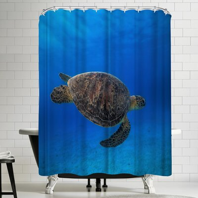 1x Green Turtle in the Blue Shower Curtain
