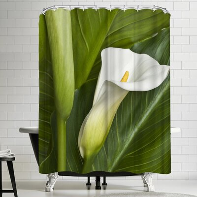Maja Hrnjak Calla Shower Curtain