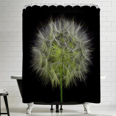 Maja Hrnjak Dandelion Shower Curtain