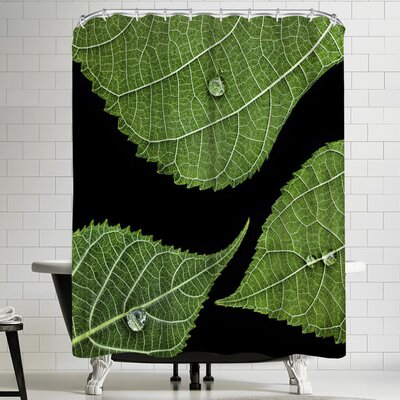 Maja Hrnjak Drops Shower Curtain