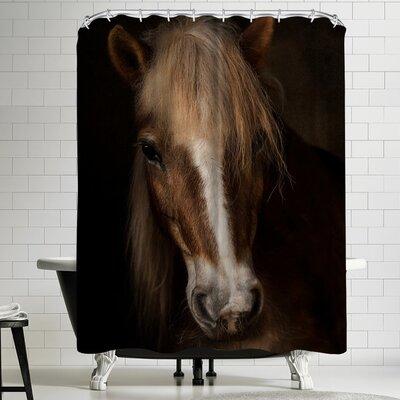 1x Sapience Shower Curtain