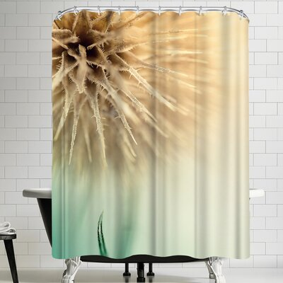 1x The Claw Shower Curtain