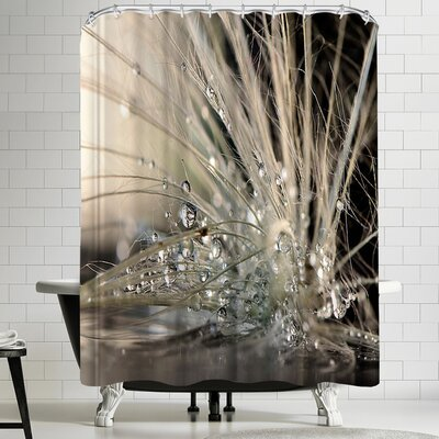 1x Pearls Shower Curtain