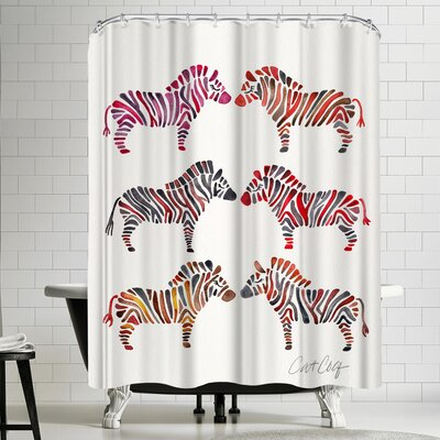 Rainbow Zebras Shower Curtain