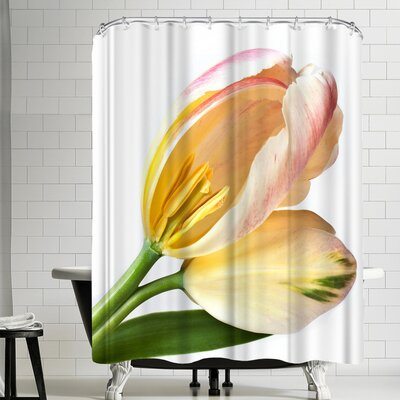 Maja Hrnjak Tulips 3 Shower Curtain