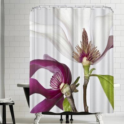 Maja Hrnjak White and Pink Shower Curtain