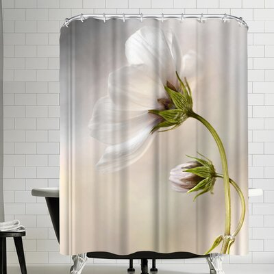 1x Heavenly Cosmos Shower Curtain