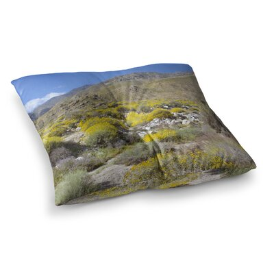 Nick Nareshni Desert Colors Photography Square Floor Pillow Size: 26 x 26