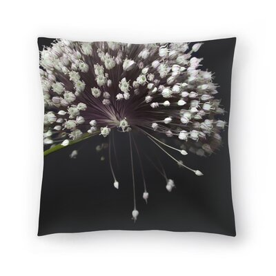 Maja Hrnjak Blooming Throw Pillow Size: 16 x 16