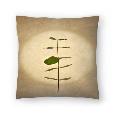 Maja Hrnjak Botany11 Throw Pillow Size: 20 x 20