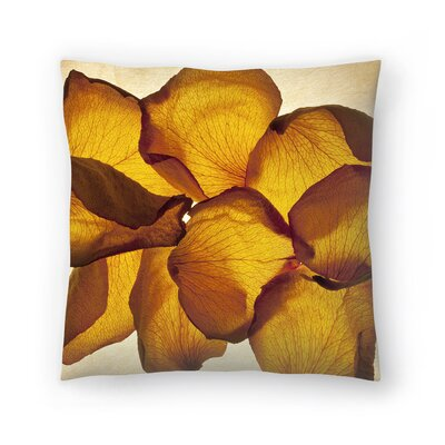 Maja Hrnjak Botany7 Throw Pillow Size: 14 x 14