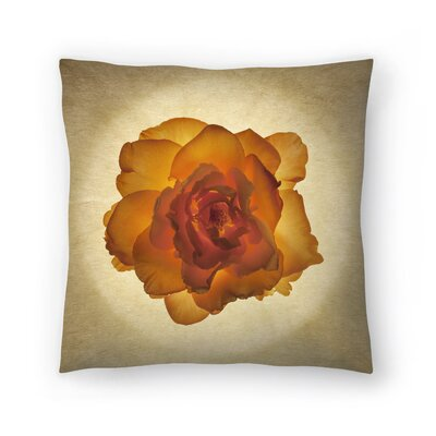 Maja Hrnjak Botany9 Throw Pillow Size: 16 x 16