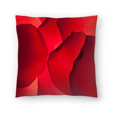 Maja Hrnjak Petals Throw Pillow Size: 18 x 18