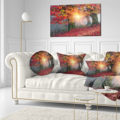 Sun in Autumn Forest Landscape Photography Throw Pillow Size: 20 x 20