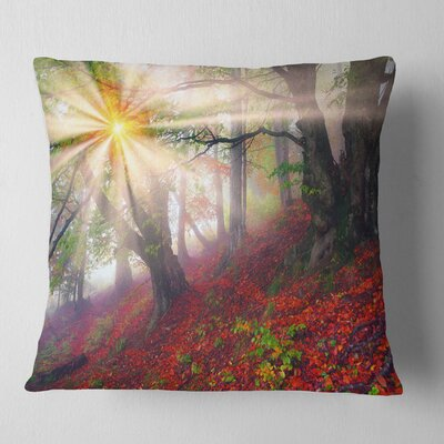 Sun in Forest After Heavy Storm Landscape Photography Pillow Size: 16 x 16, Product Type: Throw Pillow