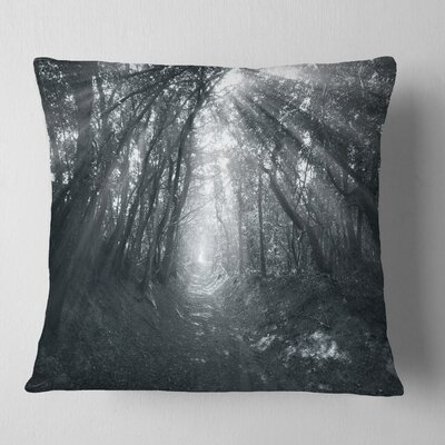 Sun Rays Through Trees Landscape Photography Pillow Size: 26 x 26, Product Type: Euro Pillow