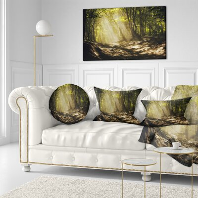 Sun Rays Through Trees Landscape Photography Throw Pillow Size: 20 x 20