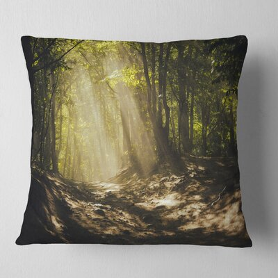 Sun Rays Through Trees Landscape Photography Pillow Size: 16 x 16, Product Type: Throw Pillow