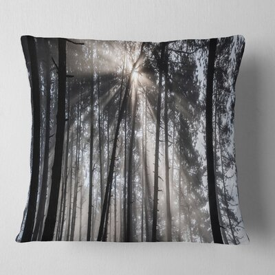 Sunbeams Through Forest Pillow Size: 26 x 26, Product Type: Euro Pillow