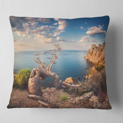 Sunny Morning with Old Tree Seashore Photo Pillow Size: 26 x 26, Product Type: Euro Pillow