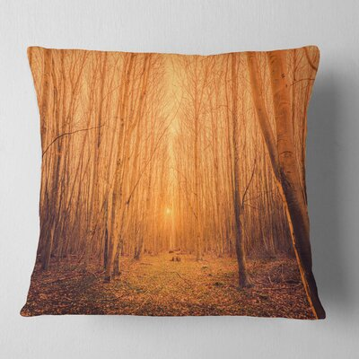 Sunrise in a Forest with Tall Trees Landscape Photography Pillow Size: 18 x 18, Product Type: Throw Pillow