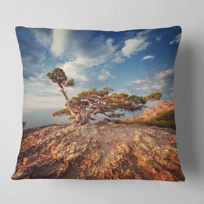 Sunrise with Old Tree at Peak Landscape Photo Pillow Size: 18 x 18, Product Type: Throw Pillow
