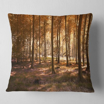 Thick Fall Forest with Leaves Landscape Photography Pillow Size: 16 x 16, Product Type: Throw Pillow