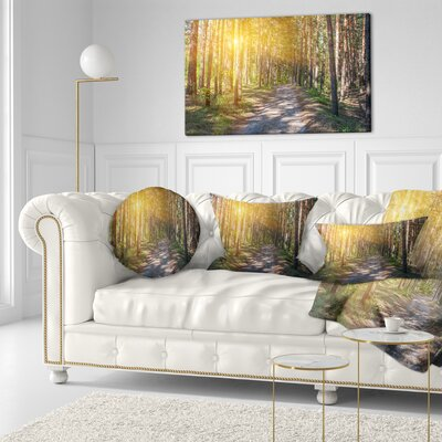 Thick Forest with Sun Rays Landscape Photography Throw Pillow Size: 16 x 16
