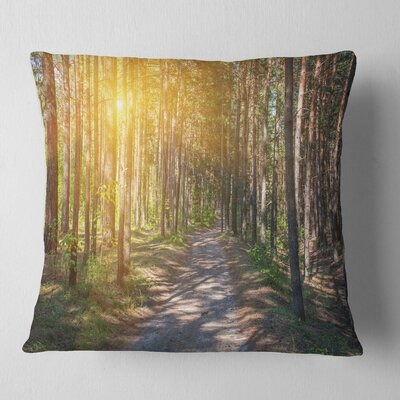 Thick Forest with Sun Rays Landscape Photography Pillow Size: 26 x 26, Product Type: Euro Pillow