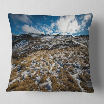 Top of Kosciuszko National Park Seashore Pillow Size: 16 x 16, Product Type: Throw Pillow