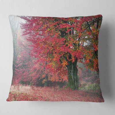 Calm Autumn Forest after Storm Landscape Photography Pillow Size: 18 x 18, Product Type: Throw Pillow
