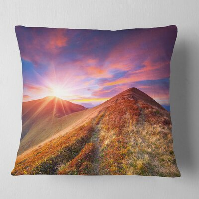 Grass and Clouds Landscape Photography Pillow Size: 18 x 18, Product Type: Throw Pillow