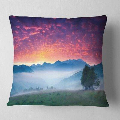 Blood Sky Grass Landscape Photo Pillow Size: 16