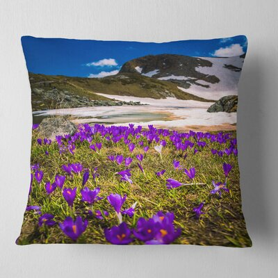 Blooming Crocus Flowers in Rila Mountains Landscape Printed Pillow Size: 16 x 16, Product Type: Throw Pillow