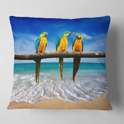 Gold Macaws at Beach Seashore Photo Pillow Size: 18 x 18, Product Type: Throw Pillow