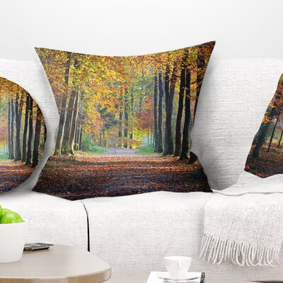 Wide Pathway in Fall Forest Landscape Photography Pillow Size: 18 x 18, Product Type: Throw Pillow