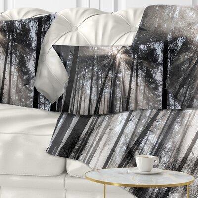 Sunbeams Through Forest Pillow Size: 12 x 20, Product Type: Lumbar Pillow
