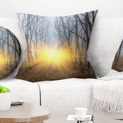 Sun Rays in Misty Forest Landscape Photography Pillow Size: 16 x 16, Product Type: Throw Pillow