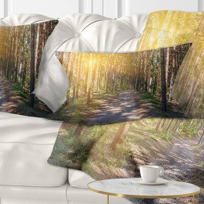 Thick Forest with Sun Rays Landscape Photography Pillow Size: 12 x 20, Product Type: Lumbar Pillow