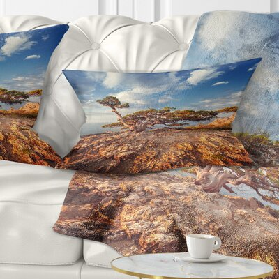 Sunrise with Old Tree at Peak Landscape Photo Pillow Size: 12 x 20, Product Type: Lumbar Pillow